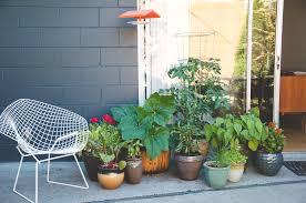 Urban Veggie Garden - more with less creating a productive vegetable garden in under 15