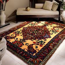 Can You Shoo An Area Rug Kazempour Rug Gallery