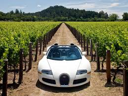 sport cars wallpaper bugatti owners club