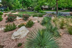 Idea For Backyard Landscaping by Xeriscape Design Ideas Hgtv