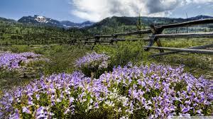 Montana travel definition images Ranch in montana 4k hd desktop wallpaper for 4k ultra hd tv jpg