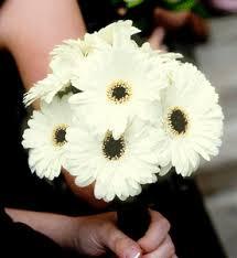 Wedding Flowers Essex Prices Gerbera Bridal Bouquet