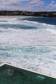 sydney australia 5 restaurants bars and cafes i loved posh