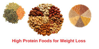 high protein foods u0026 diet for weight loss u0026 good health beauty