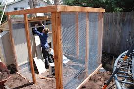 burying chicken wire around run backyard chickens