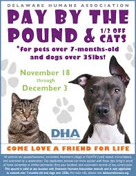 home dha delaware humane association friends for life