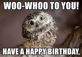 Happy Birthday Owl Meme - owl birthday memes wishesgreeting