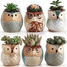 Succulent Pots For Sale Amazon Com Sun E 6 In Set 2 5 Inch Owl Pot Ceramic Flowing Glaze