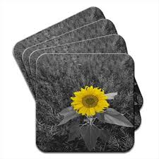 bright yellow sunflower in grey fields set of 4 coasters amazon