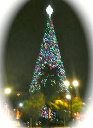 tree lighting in delray 100 foot tree