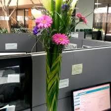 florist san diego sweet floral 35 photos 76 reviews florists 11696 sorrento