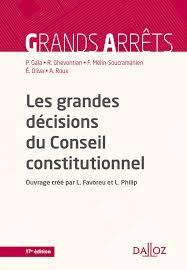 si e du conseil constitutionnel amazon fr les grandes décisions du conseil constitutionnel 17e