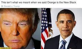 Orange Is The New Black Meme - donald trump orange is the new black meme whereismyvote info