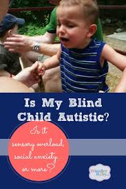 Is Being Blind A Physical Disability Is My Blind Child Autistic One Parent U0027s Experience Wonderbaby Org