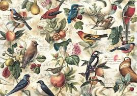bird wrapping paper the tree house shop selling stationery wrapping paper online