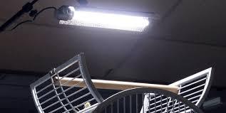uv light for birds lighting