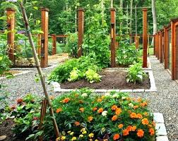 Fruit And Vegetable Garden Layout Vegetable Garden Plans For Beginners Gardens Vegetable Garden