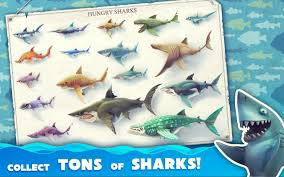 Hungry Shark Map Amazon Com Hungry Shark World Appstore For Android