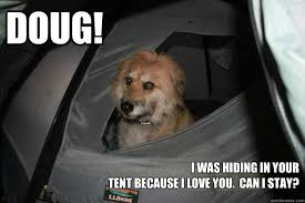 Doug Meme - doug i was hiding in your tent because i love you can i stay