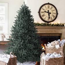 best trees ideas on amazing