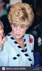 Prince Charles Princess Diana 742 Best Diana Images On Pinterest British Royals Princess