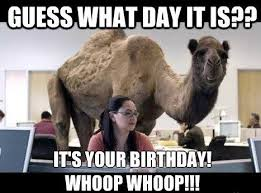 Funny Memes For Her - funny happy birthday memes for her feeling like party
