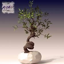 bonzai olive tree by 1zmim on deviantart
