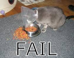 Fail Meme - fail cat meme cat planet cat planet