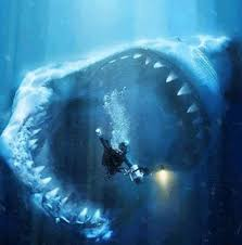 pictures of a best 25 scary shark pictures ideas on shark pictures