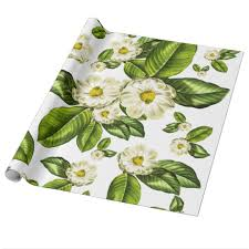 botanical wrapping paper magnolia flowers botanical wrapping paper zazzle
