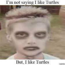 I Like Meme - image 267682 i like turtles know your meme