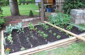 small kitchen garden ideas astonishing small backyard vegetable garden design ideas the plans