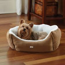 Elevated Dog Bed With Stairs Pet Care Jcpenney