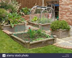Small Raised Bed Vegetable Gardens Raised Bed Vegetable Garden Stock Photos U0026 Raised Bed Vegetable