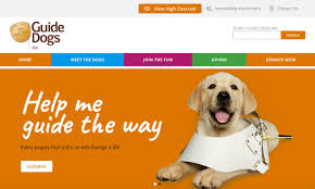 home page guide dogs wa