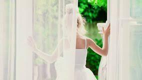 Ballerina Curtains Ballerina Stock Footage U0026 Videos 4 134 Stock Videos