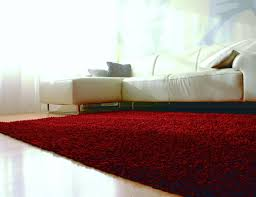 Hypoallergenic Rug Red Shag Area Rug Red Shag Rug Red Cotton Shag Rug
