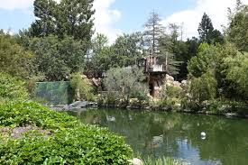 mouseplanet disneyland resort update for may 23 29 2016 by