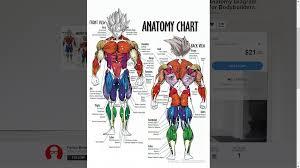 Dragon Sloth Meme - dragon anatomy diagram free download wiring diagram
