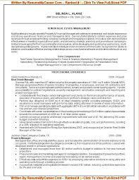 Entertain Executive Resume Writers Tags Professional Resume Writers Chicago Yelp U2013 Inssite