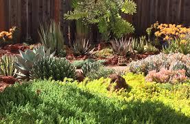 Botanical Garden Design by Drought Tolerant Garden Design Arid Accents