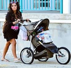 Snooki Meme - snooki uses new baby stroller to cart beer to beach party daily