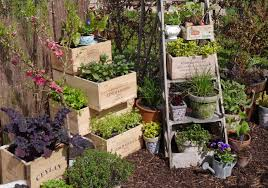 tiny gardens ideas