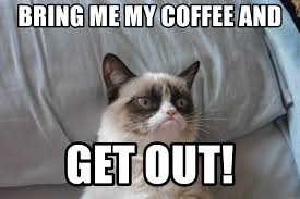 Meme Generator Grumpy Cat - bring me my coffee and get out grumpy cat food meme generator