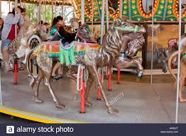 merry go at busch gardens in ta florida usa fl u s stock