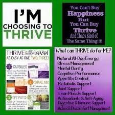 Hit The Floor Online Free - 105 best thrive images on pinterest thrive le vel thrive