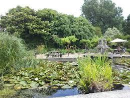 Ventnor Botanic Gardens Pond Next To The Restaurant Picture Of Ventnor Botanic