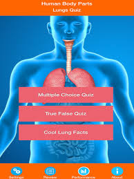Human Quiz Human Body Parts Lungs Quiz On The App Store