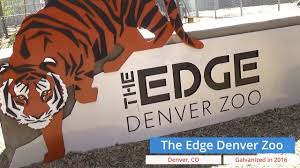 Denver Zoo Lights Coupons by Denver Zoo The Edge Youtube