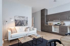 salon et cuisine ouverte design interieur cuisine ouverte sur salon armoires bois canape